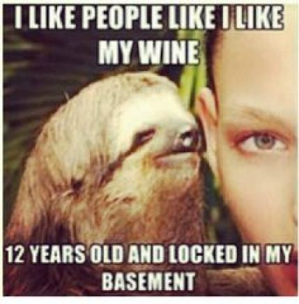 Funny Sloth Whisper Memes I like people like i like my wine 12 years old and locked
