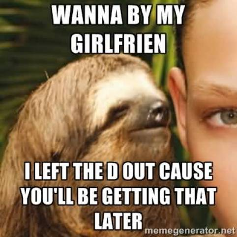 Funny Sloth Whisper Memes Wanna by my girlfrien i left the D out