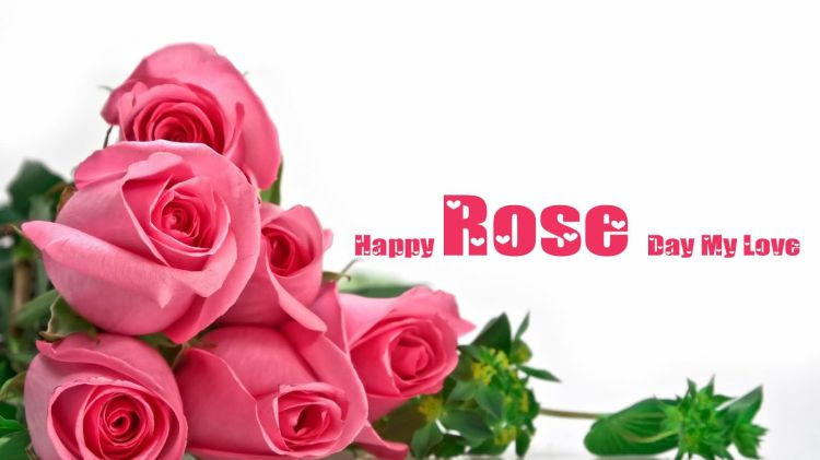 Girlfriend Rose Day Wishes Greeting Image