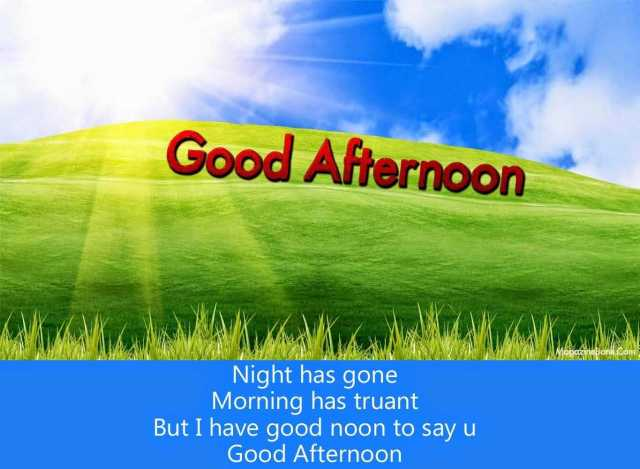 Good Afternoon Message Wallpaper