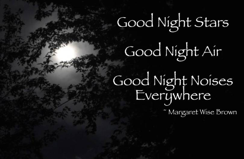 Goodnight Moon Quotes Good Night Stars Good Nght Air Good Night Noises Everywhere