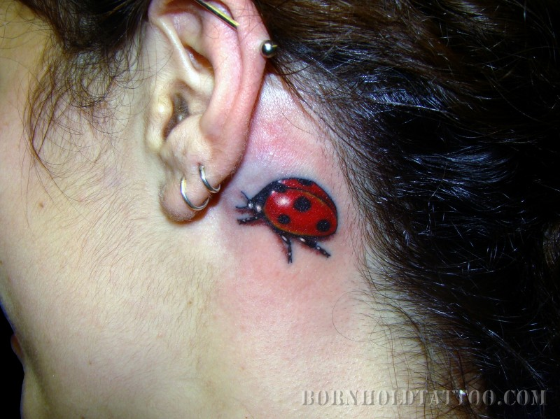 Groovy Black And Red Color Ink Back Ear Lady Bug Tattoo For Girls