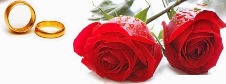 Happy Rose Day Greeting Idea