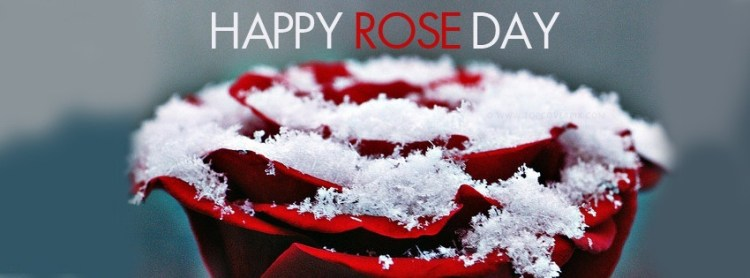 Happy Rose Day Wishes Flower