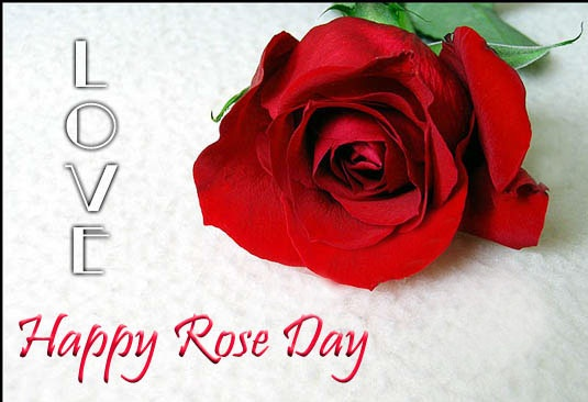 Happy Rose For Day Love Greeting Image