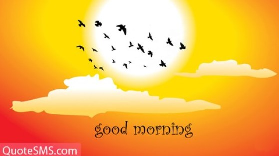 Have A Fresh Morning Wishes Message Image
