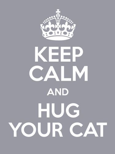 Hug Your Cat On Cat Day Image