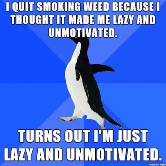 I Quit Smoking Weed Because I Thought It Made Me Lazy Funny Lazy Memes