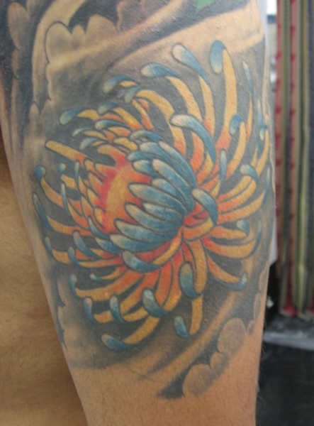 Incredible Blue Red And Black Color Ink One More Chrysanthemum Tattoo For Boys