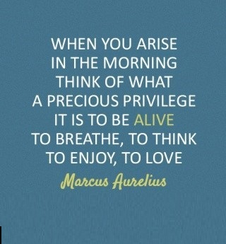 Inspirational Happiness Quotes When you arise in the morning think of what a precious privilege it is to be alive to breathe to think to enjoy to love