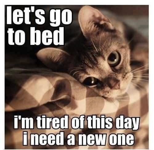 Lets Go To Bed I'm Tired Of This Day Funny Lazy Memes