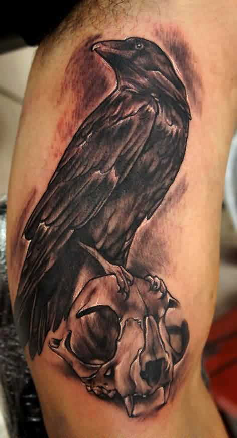 Marvel Red And Black Color Ink Crow With Cat Skull Tattoo On Muscles For Boys