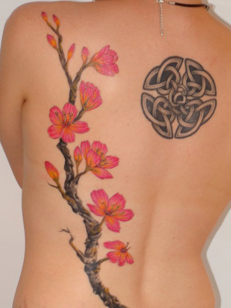 Mind Blowing Black And Red Color Ink Cherry Blossom & Celtic Symbol Tattoo On Back For Girls