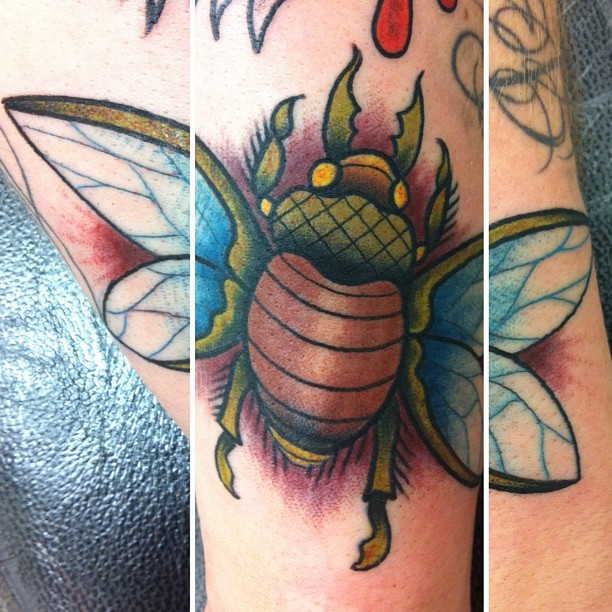 Nice Green Blue Black And Red Color Ink Bug Tattoo Design On Arm For Girls