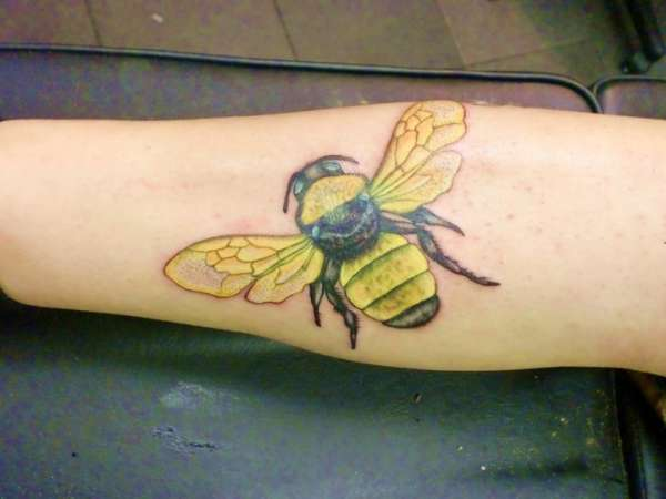 Superb Black And Yellow Color Ink Arm Bumble Bee Tattoo For Girls