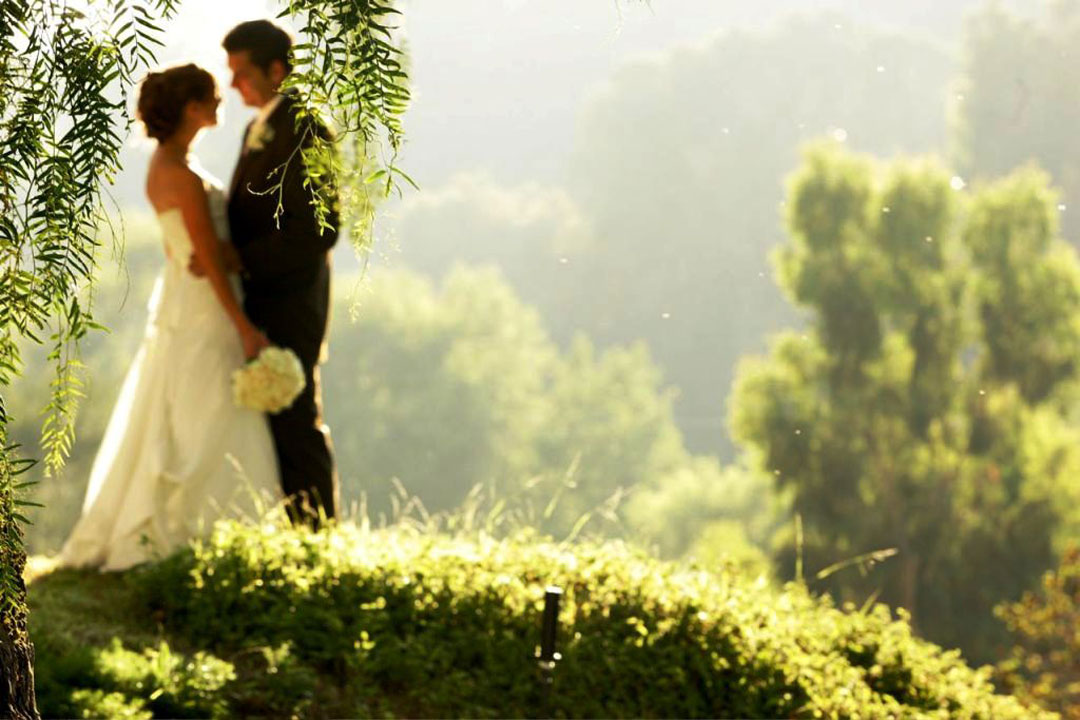 Wedding Couple Wallpaper Picsmine