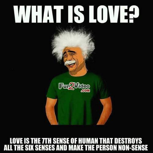 What is love love is the 7th sence of human that destroy all six senses Love Memes