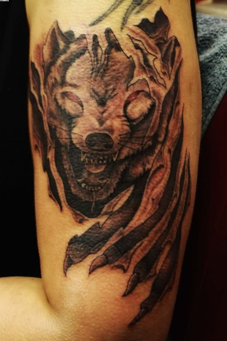 Wolf Tattoo With Scratch Of Animal On Biceps For Boys