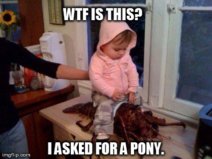 Wtf Is This I Asked For A Pony Funny WTF Memes