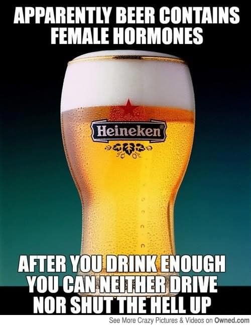 Apparently Beer Contains Famale Hormones After You Drink Enough Beer Meme