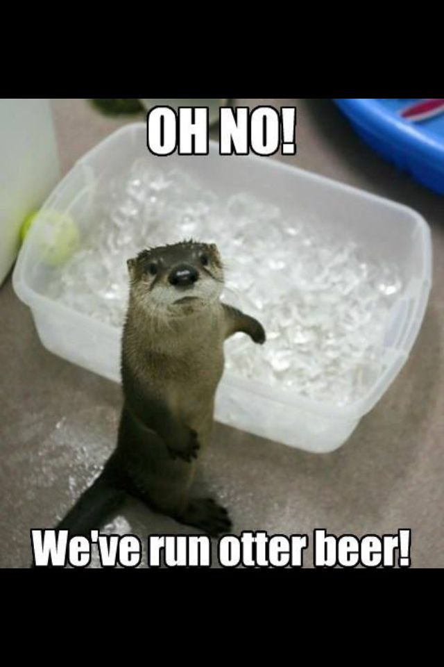 Beer Meme Oh No! We've Run Otter Beer!