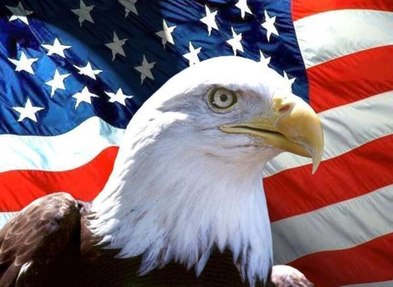 Best Wishes Happy National Freedom Day Eagle Wallpaper