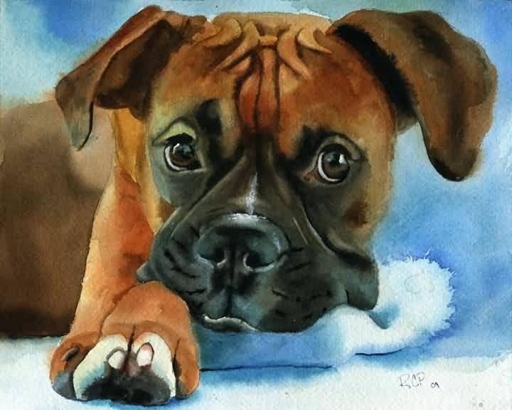 Brilliant Watercolor Painting Of Brown Boxer Dog Image For Wallpaper