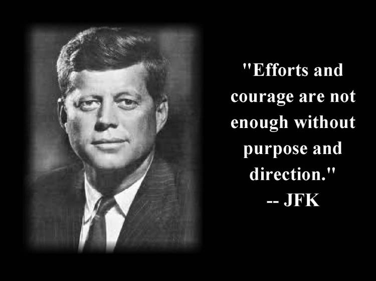 Celebrity Sayings Efforts And Courage Are Not Enough Without Purpose