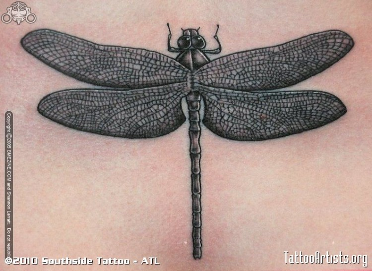 Crazy Dragonfly Tattoo For Girls
