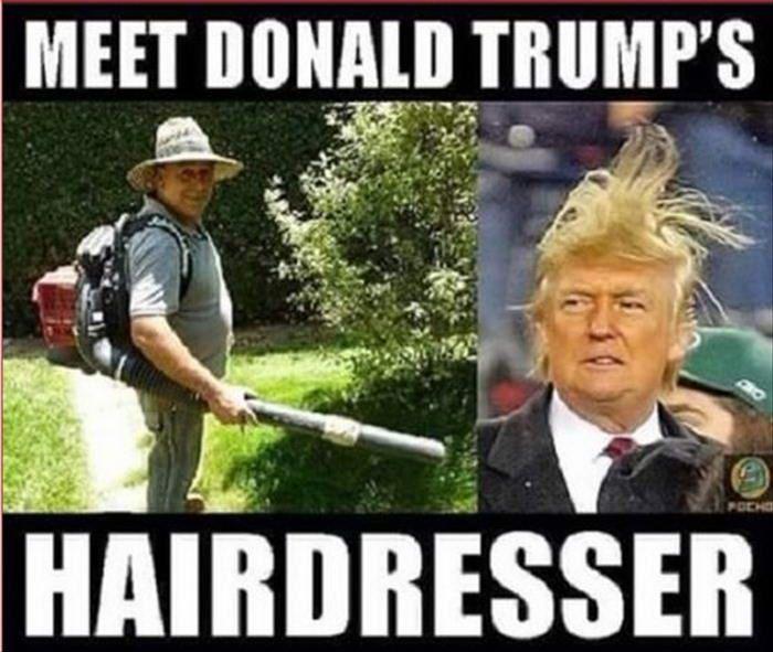 Donald Trump Memes Meet Donald Trump Hairdresser