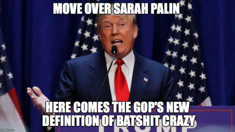 Donald Trump Memes Move Over Sarah Palin Here Comes The Gop's