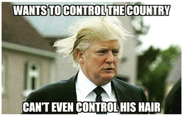 Donald Trump Memes Wants To Control The Country Cant Even Control His Hair