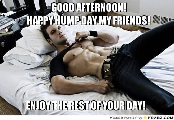 Good Afternoon Happy Humpday My Friend Meme Picture