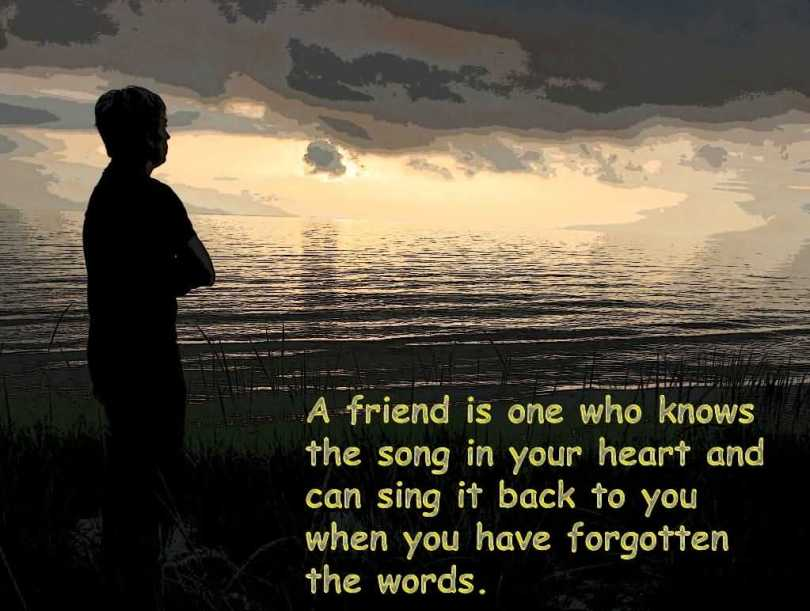 Happy Friendship Day Wishes Message