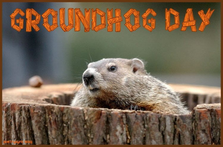 Happy Groundhog Day Wishes Image