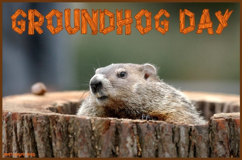 Happy Groundhog Day Wishes Image