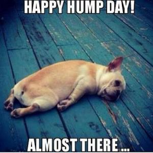 Happy Hump Day Almost There Meme Photo