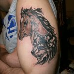 53 Fantastic Horse Tattoos Designs Styles Ideas Picsmine