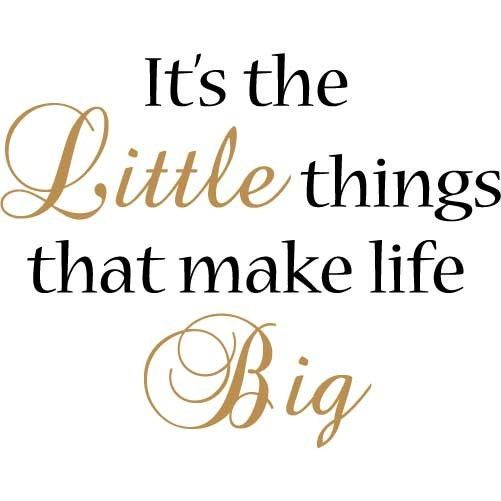 Little Big Quotes It's the little things that make life big