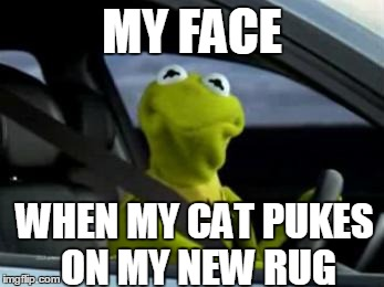 Meme My Face When My Cat Pukes On My New rug Graphicq