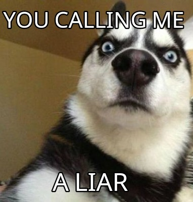 Meme You Calling Me A Liar Dog Meme Graphic