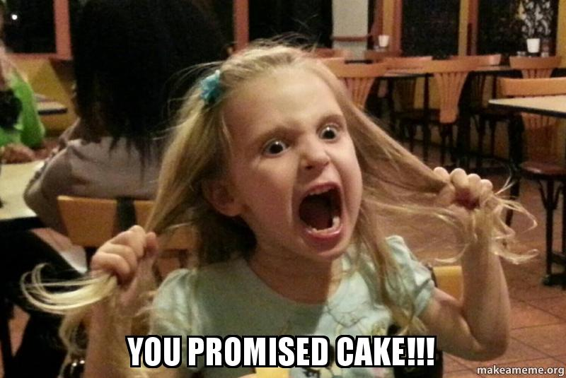 Meme You Promised Cake Photo