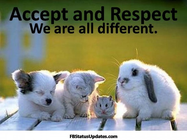 Respect Quotes accept and respect we are all different