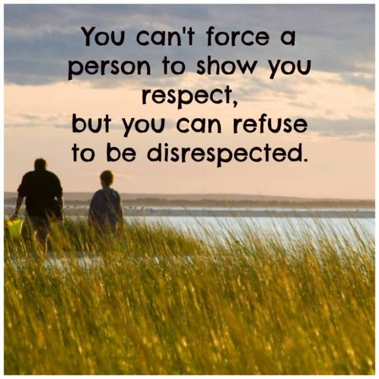 Respect Quotes you can't force a person to show you respect