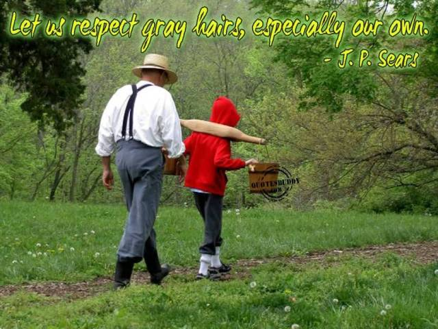 Respect Sayings let us respect gray hairs especially our own