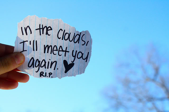 Rip Quotes In the clouds, I'll meet you again R.I.P.