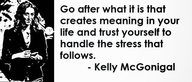 Stress Quotes go after what it is that creates meaning in your life and trust yourself to handle the stress that follows..