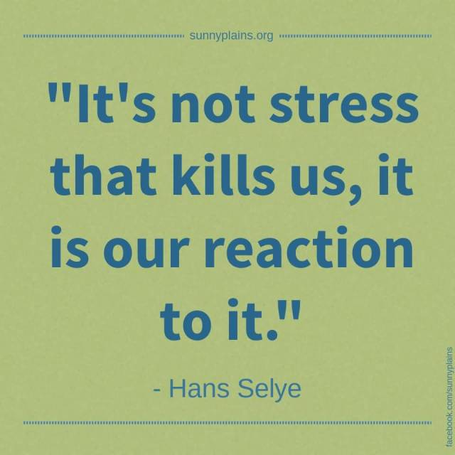 Stress Quotes it's not stress that kills us, it is our reaction to it....