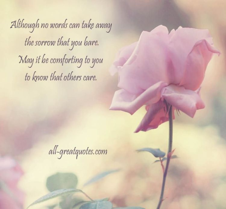 Sympathy Quotes although no words can take away the sorrow that you bare....