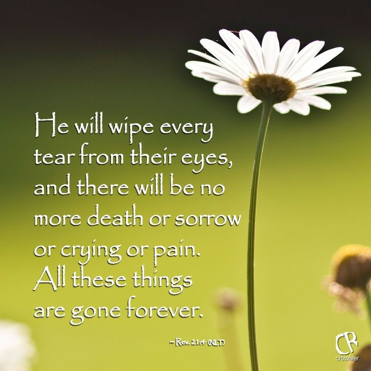 Sympathy Quotes he will wipe every tear from their eyes, and there will be no more death or sorrow or crying or pain...